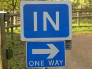 Image for Only one way in