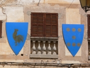 Image for Shields with Heraldry