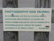 Image for Copyright Photography at the Zoo