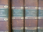 Image for Cyclopedia