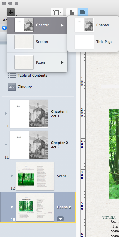 PagetoScreen - From InDesign to iBooks Author